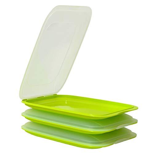 ENGELLAND - Hochwertige stapelbare Aufschnitt-Boxen, Frischhaltedose für Aufschnitt. Wurst Behälter. Perfekte Ordnung im Kühlschrank, 3 Stück Farbe Grün, Maße 25 x 17 x 3.3 cm