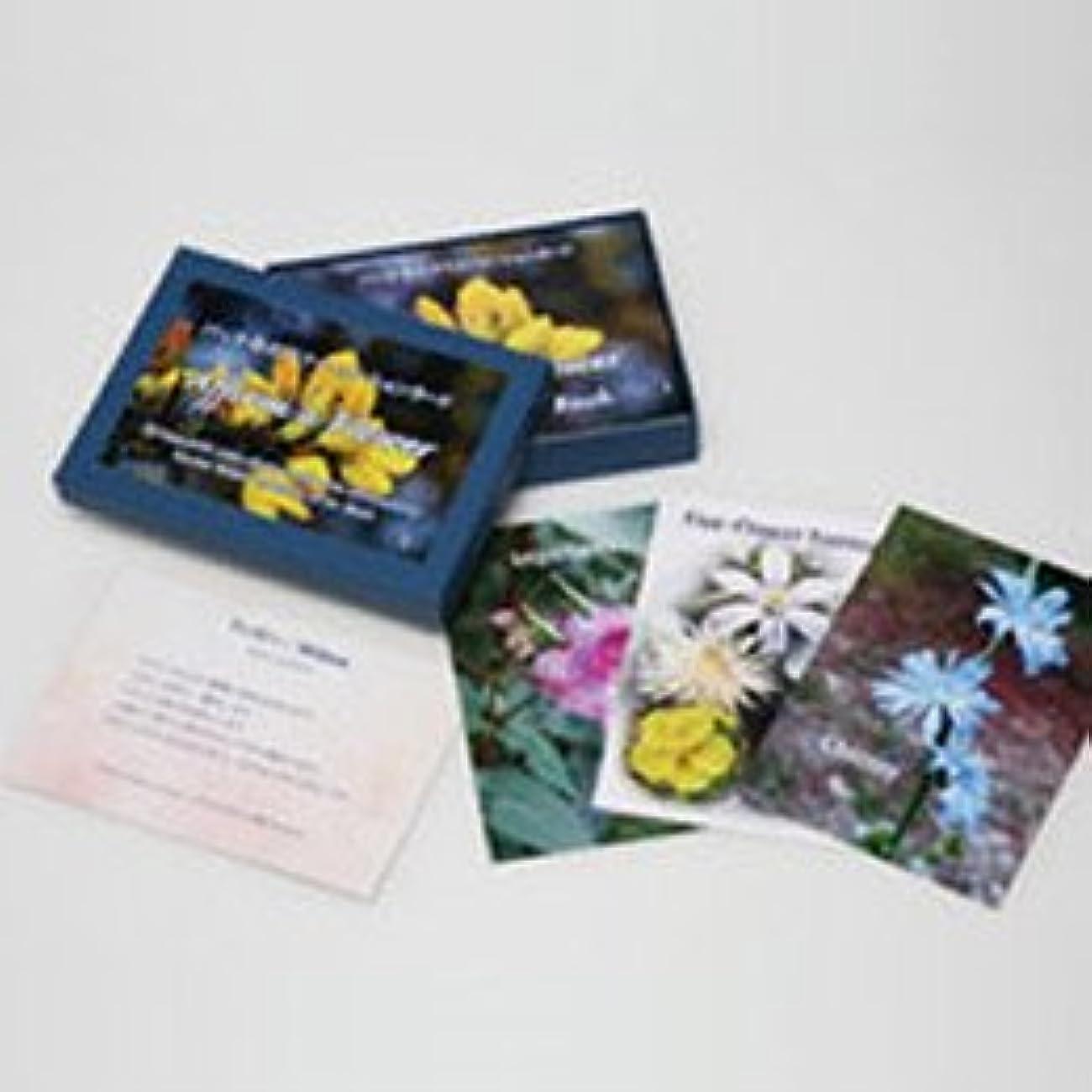 関数菊窓を洗うバッチアファメーションカード(38枚) 日本国内正規品