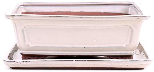Bonsai 31032 Bol carré avec Soucoupe Crème 25 x 21 x 9 cm