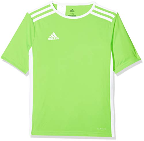 adidas Entrada 31 Camiseta de Fútbol para Hombre de Cuello Redondo en Contraste, Verde (Solar Green/White), S