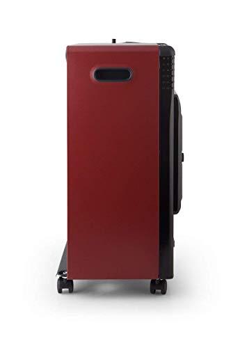 ElectrodomesticosN1 Calentadores y estufas de exterior