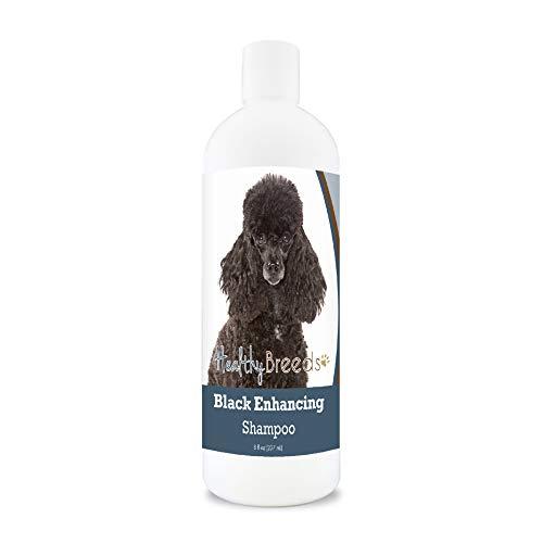 Healthy Breeds Poodle Black Enhancing Shampoo 8 oz