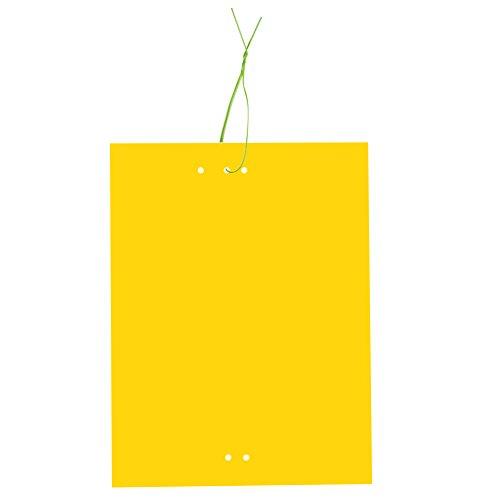 30 pièges collants jaunes
