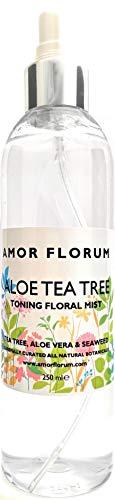 HYDRATISIERENDES BLUMENWASSER - ALOE VERA & TEE BAUM - 250ml - von AMOR FLORUM. Eine tief feuchtigkeitsspendende, natürliche Mischung von Pflanzenextrakten. Ohne Zusatz von Parfüm.