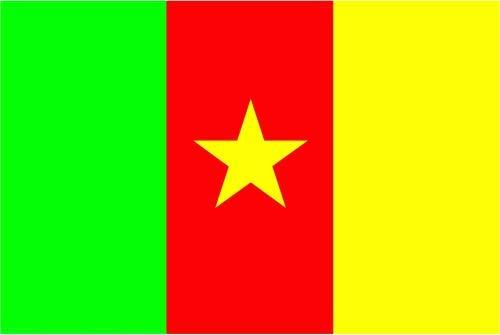 Fahne / Flagge Kamerun 90 x 150 cm Flaggen