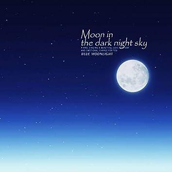 캄캄한 밤하늘의 달