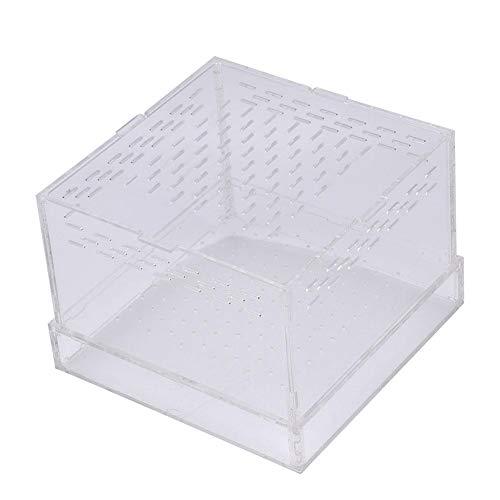 HEEPDD Wurmzucht Box Tragbare Acryl Reptilien Box Terrarium Lebensraum für Mehlwurm Vogelspinnen Geckos Grillen