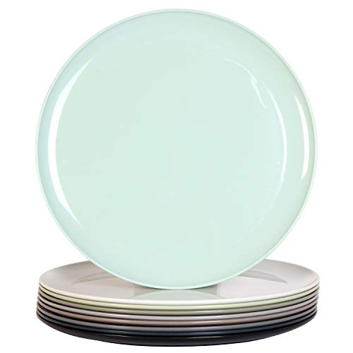 Youngever 10 Inch Plastic Plates Large Plates Dinner Plates Microwave Safe Dishwasher Safe Set of 9 in 9 Urban Colors