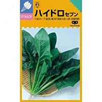 ホウレンソウ 種 ハイドロセブン 小袋(約25ml)