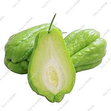ASTONISH Erstaunen SEEDS: Kürbis Chayote Samen wie ein Mensch Hand-Hausgarten Gesundheit Obst Gemüse Tohumlar Bonsaipflanzen 20 PC