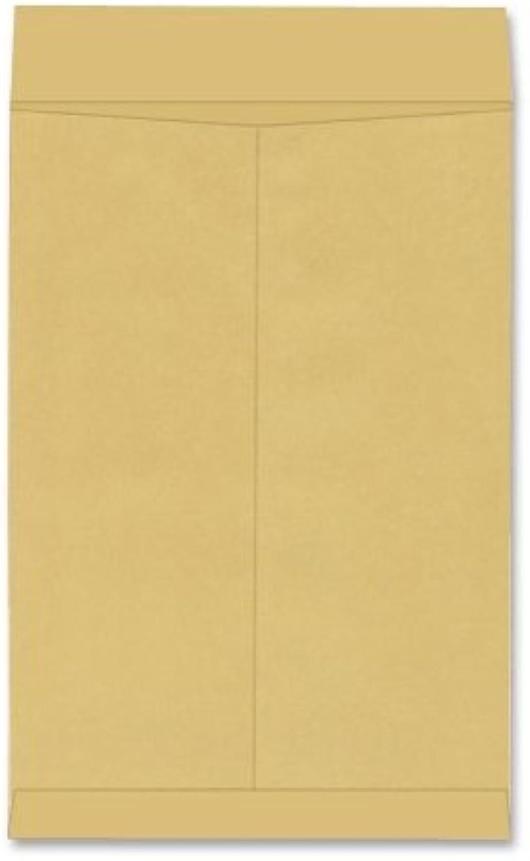 Jumbo Größe Kraft Envelope, 17 x 22, braun Kraft, 25 Box by Quality Park·· B0141NPA8S   Realistisch