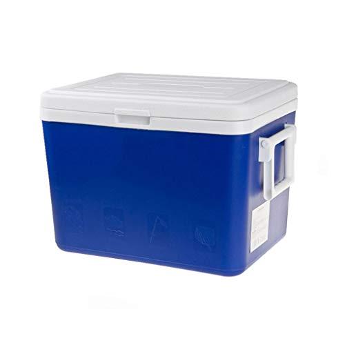 LIYANLCX 13L / 27L Kapazität Tragbarer Kühlschrank/Gefrierschrank Kompaktfahrzeug Auto Mini Kühlschrank Weinflaschenkühler Lebensmittellagerung für Reise Picknick Camping Home