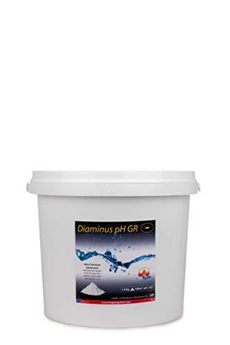 Reductor del pH para Piscinas DIAMINUS PH GR 5 KG – Formato Granulado