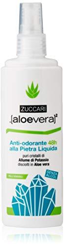 ZUCCARI [Aloe Vera] ² - 48 horas Desodorante con Stone Líquido, 1er Pack (1 x 100 ml)
