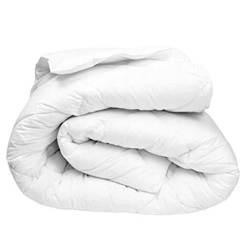 Bettdecke 200x220 Ganzjahresdecke 4-Jahreszeiten super leichte Steppdecken Schlafdecke für Allergiker Steppbettdecke Mikrofaser ekmTRADE (200 x 220 cm)