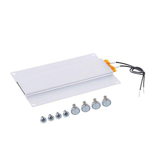qiman 220V 300W LED Entferner Calefacción...