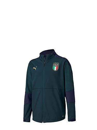 PUMA Felpa Allenamento FIGC Junior Verde 20/22 Italia 14 y Verde