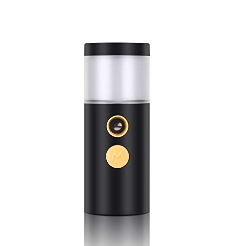 QKURT Nebulizzatore per Il Viso Nano-Spray, Nebulizzatore Vaporizzatore per Il Viso Nano Mister Spray per idratazione per Uso Quotidiano Make-up Misture Skin - USB Ricaricabile Portatile