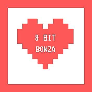 8 Bit Bonza
