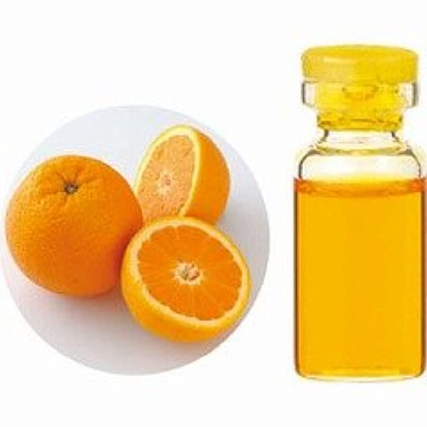 不定大破不適切なエッセンシャルオイル(精油) オレンジスイート 10ml 【生活の木】