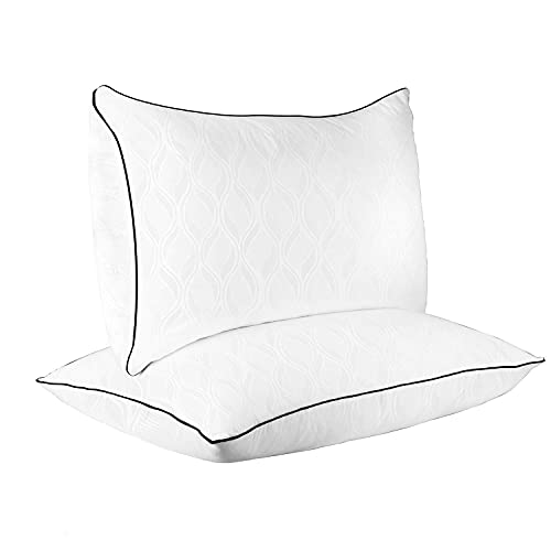 SUGARYDREAM Queen Size Bed Pillow Set of 2, Luxury Skin-Friendly Pillows for Side Back Sleeper Hotel Quality Pillow Down Alternative Pillow with Soft Plush Fiber Fill, 18x28Inch