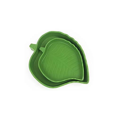 YUEMING 2 Pezzi Ciotola d'Acqua Alimento Rettile, Forma di Foglia Alimentazione Ciotola Serpenti Tartaruga Ragni Lucertole Acqua Bere Alimenti Mangiato Piccolo Pet Feeding Supplies