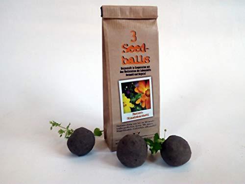 Die Seedball-Manufaktur Seedballs Bienenstaatsbankett 3er, Naturfarbene Kraftpapiertüte, 5,5 x 13 x 3 cm