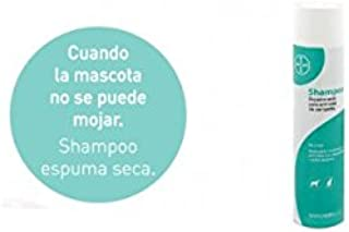 Bayer Sano & Bello Champú Espuma Seca - 300 ml: Amazon.es ...