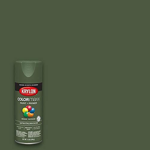 Krylon K05566007 COLORmaxx Spray Paint, Aerosol, Italian Olive