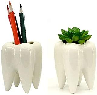 Koreyoshi 2 Pcs Teeth Pots White Ceramic Succulent Planter Pots/Mini Flower Plant Containers Cute Animal Shaped Cartoon Planter Pots Plant Window Boxes (Style 2)