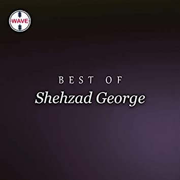 Best Of Shehzad George