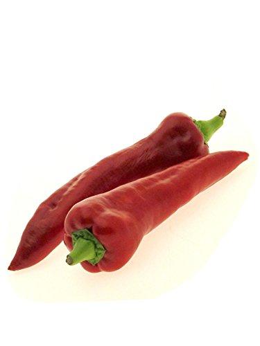 Rote Spitz-Paprika 'Marconi Rosso' (Capsicum annuum) 20 Samen