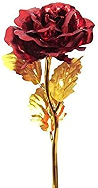 CIYA Plus Valentines Day, Friendship's Day Special Red Rose with Beautiful Gift Box for Girlfriend/Boyfriend-