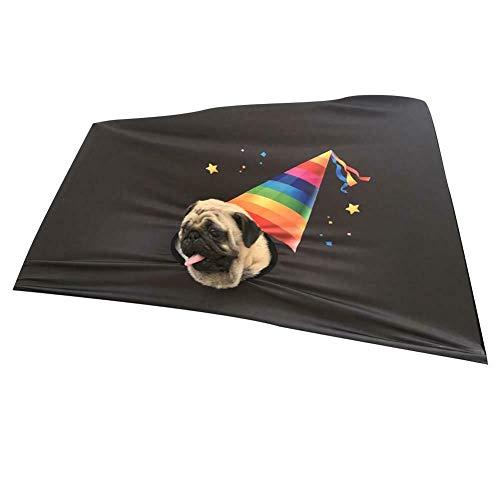 Fxhan Opvouwbaar autoraam vizier afdekking veiligheidshek zonnescherm gordijn elasticiteit voor pet dog