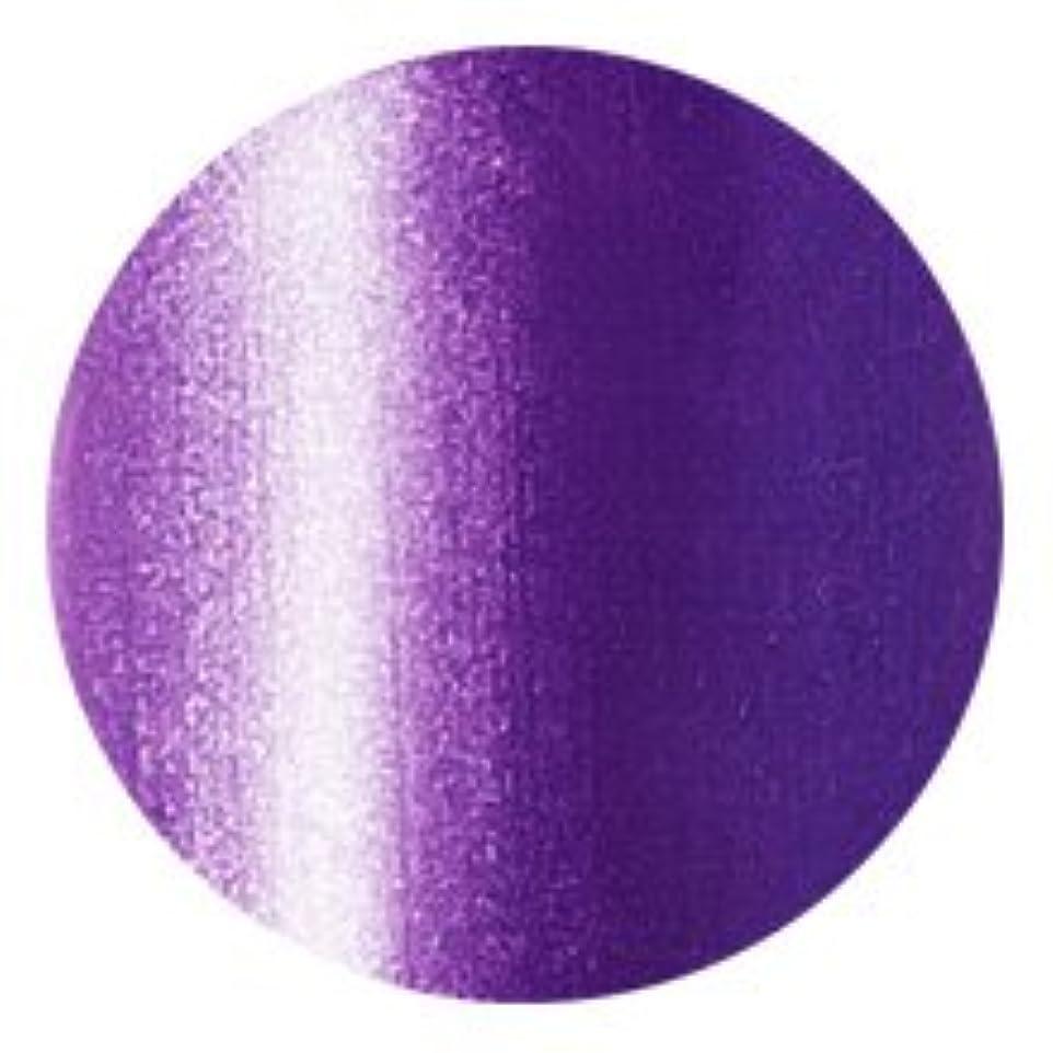 予見する不愉快に信頼できるFleurir Color Gel P20 ネプチューン(tat100520)