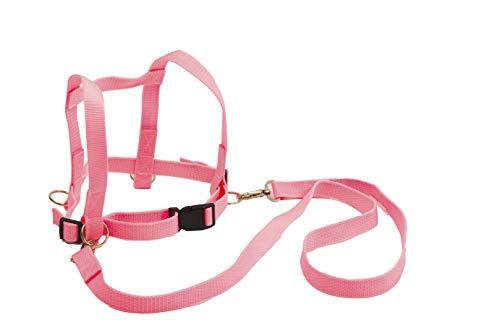 Pferdeleine zum Spielen für Mädchen inkl. Minis Überraschung I Pink I Pferdegeschirr für Kinder I Pferdeleine Kinder I Kinderleine Pferdefreunde von 3 bis 12 Jahre