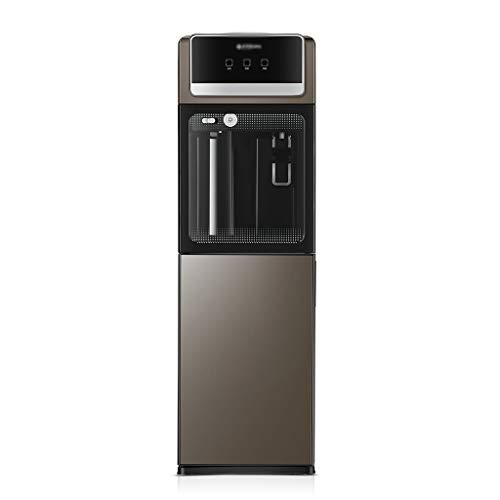 Dispensador de agua caliente Calentador De Agua For El Hogar De Moda Dispensador De Agua De Pie Frío Y Caliente (Color : Gray, Size : 30 * 27 * 98cm)