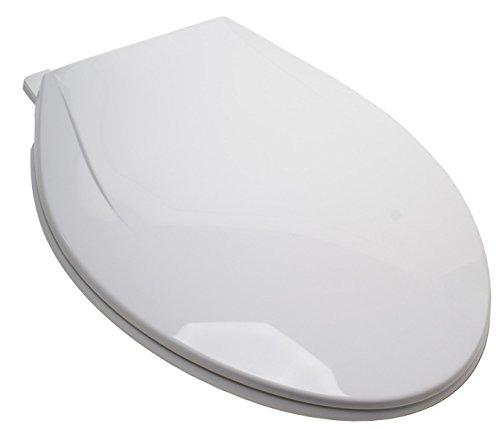 Plum Best C5c3e1s-00 White Plastic Ez Close Elongated Toilet Seat With Closed Fro
