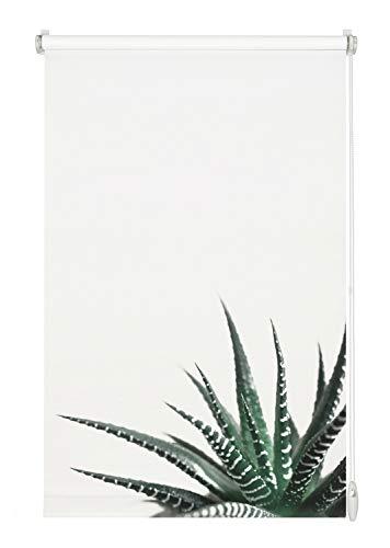Gardinia Easyfix-Estor (60 x 150 cm), diseño de Plantas suculentas, Poliéster, Blanco/decoración