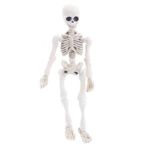 Abicial Halloween Movable Mr. Bones Skeleton Human Model Skull Mini Figure Full Body Toy