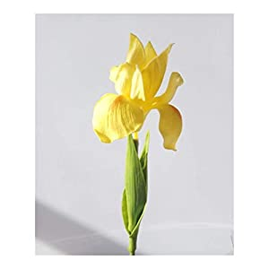 Silk Flower Arrangements Fresh PU Feel Simulation Orchid Iris Artificial Flower Home Wedding Living Room Decoration Fake Flowers Color (Color : Yellow)