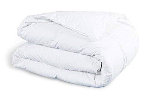 Amazinggirl Bettdecke 200x220 winterdecke Steppdecken Schlafdecke - Winterbettdecke warm für Allergiker Steppbettdecke weiß hypoallergen aus Microfaser 200 220