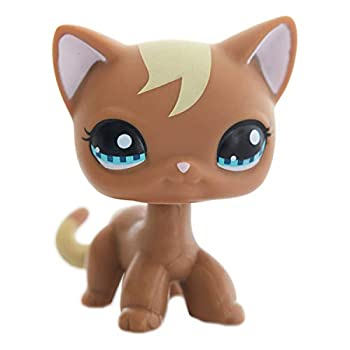 Best lps brown cats Reviews