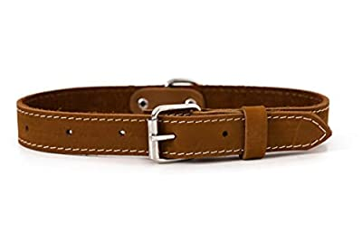 Affordable European Luxury Soft Leather Adjustable Buckle Dog Collar Made in USA