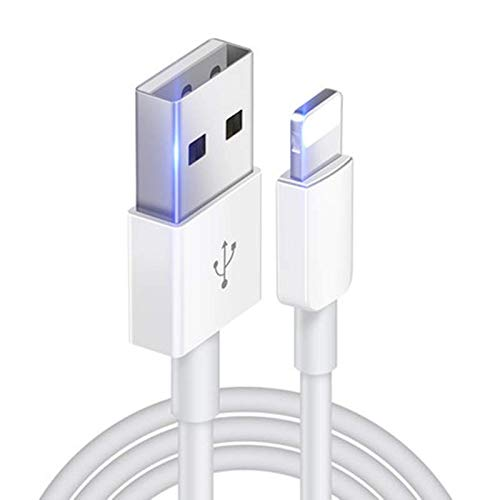 Cable cargador para iPhone 12 Pro Max Mini 11 Pro Max X XS XR 10 8 7 Plus 6 6s 5s 5 SE iPad-blanco