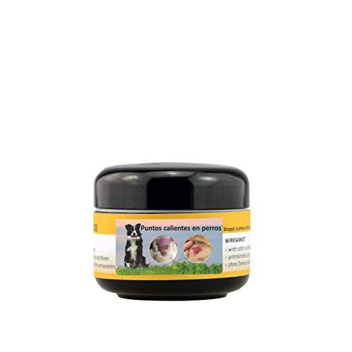 Peticare Perro Bio Crema contra PIO-Dermatitis y Hot-Spot - Pomada Especial para Formas Puntos Calientes Atopica, Alivia Picores, Calma la Piel, Cuidado 100% Organico - petDog Health 2109 (50 ml)