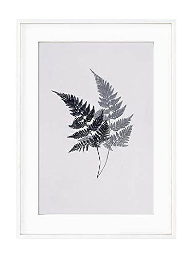 Ferns, Natural Solid Oak Frame, with Mount, Multicolored, 30x40