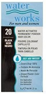 Water Works Permanent Powder Hair Color - #20 Black 0.2 oz. (Pack of 2)