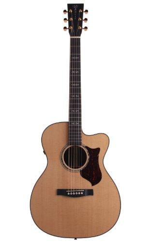 Martin omcpa1Perf orming Artist Orchestra Model + Maletín electroacústica Guitarra acústica folk...