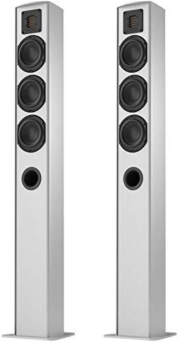 Piega Switzerland TMicro 60 AMT Premium Standing Two Speakers Aluminium with Grey Speak Cover